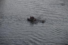 Dreikönigsschwimmen am 06.01.2017